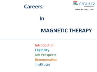 76.Careers In MAGNETIC THERAPY.pdf