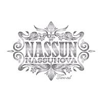 Nassun - Because of You.mp3